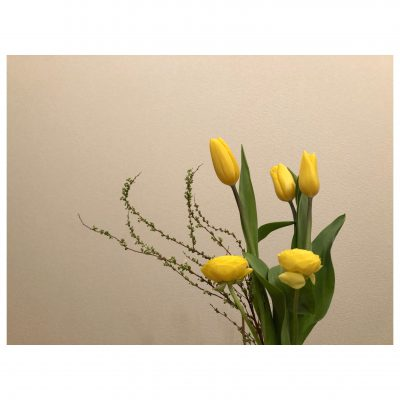 花のある家