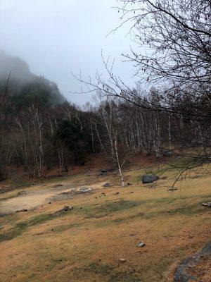 初冬のキャンプ