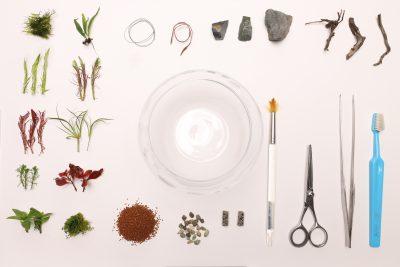 グラスと素材と道具と植物