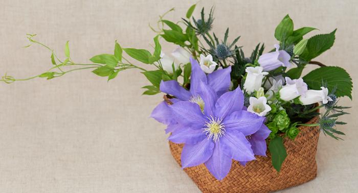 初夏の花あしらい