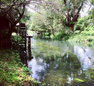 オフィーリアの泉