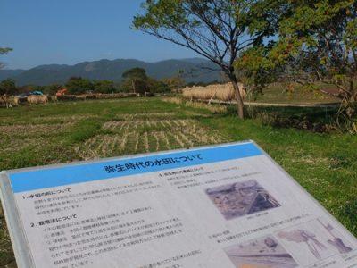 2000年の時を超え、吉野ケ里遺跡
